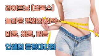 인셀덤 라이프닝 [딥톡스] 장건강 비움, 채움, 맑음_…