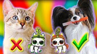 3 МАРКЕРА Челлендж / Веселый ЮКИ с котом Сеней и Куклы ЛОЛ / Чей питомец красивее?