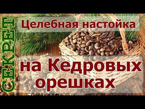 Рецепт целебной настойки на кедровых орешках