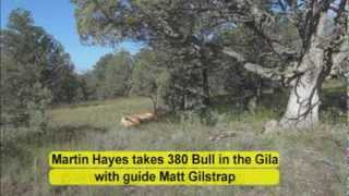 bow elk hunt 7x7 380 bull in the gila wilderness of new mexico