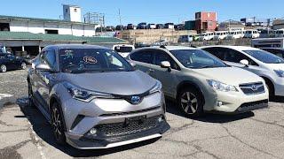 АВТОРЫНОК на Карантине? ЦЕНЫ упали? Купил авто из Японии, Тойота Харриер, Зеленый угол Владивосток
