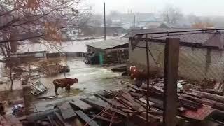 Паводок в Аягозе