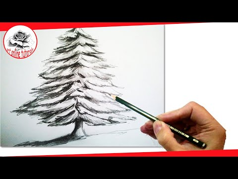 Drawing Christmas Tree Sketch.How To Draw A Realistic Christmas Tree With Pencil Draw