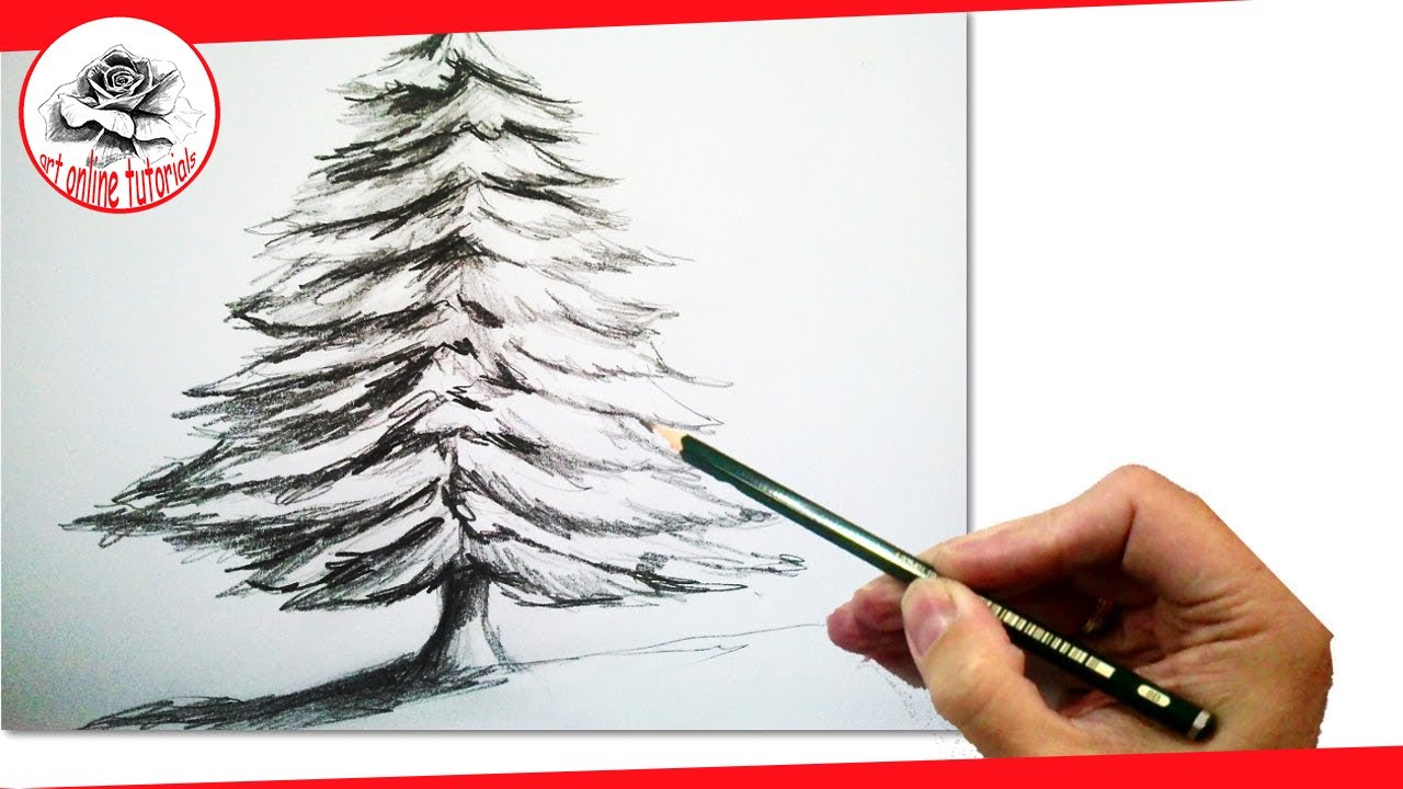 how to draw a realistic christmas tree with pencil draw step by step youtube