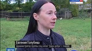 В Кирове открылся новый приют для бездомных собак(ГТРК Вятка)