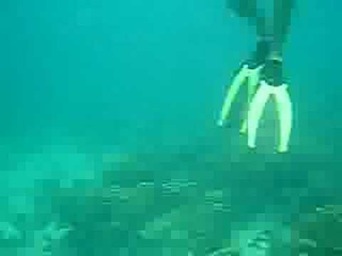 bocas underwater