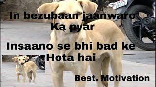 Hachiko naam ke kutte ki kahani best motivation in hindi