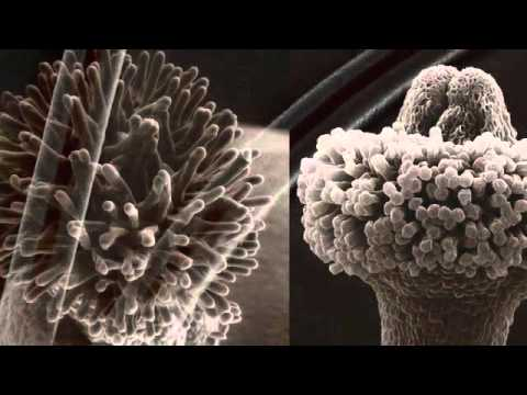 EugeneKha - Nano Age (Part 4)