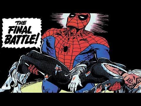 Ultimate Spider Man Meets Black Cat