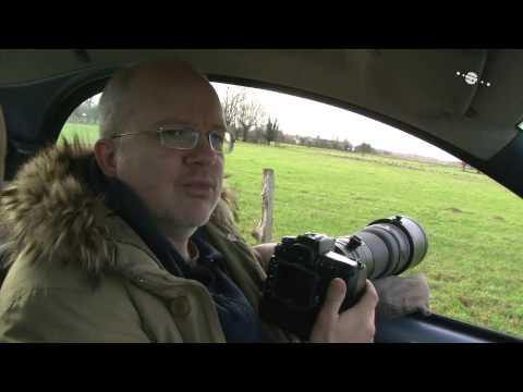 Wildlife-Fotografie unterwegs - Blende 8 - Folge 62