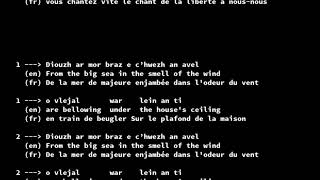 E Kreiz an Noz - Youenn Gwernig (Lyrics, Gerioù, Paroles)
