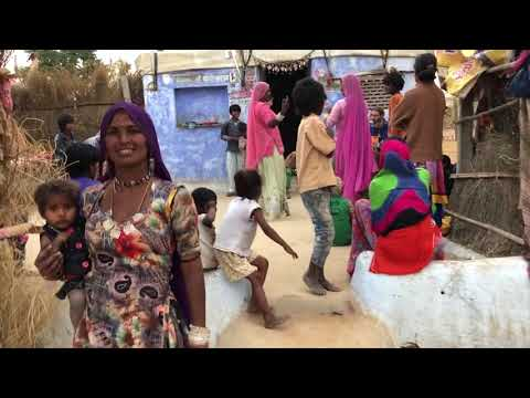 Jamming with the Cobra Gypsies in Pushkar, India