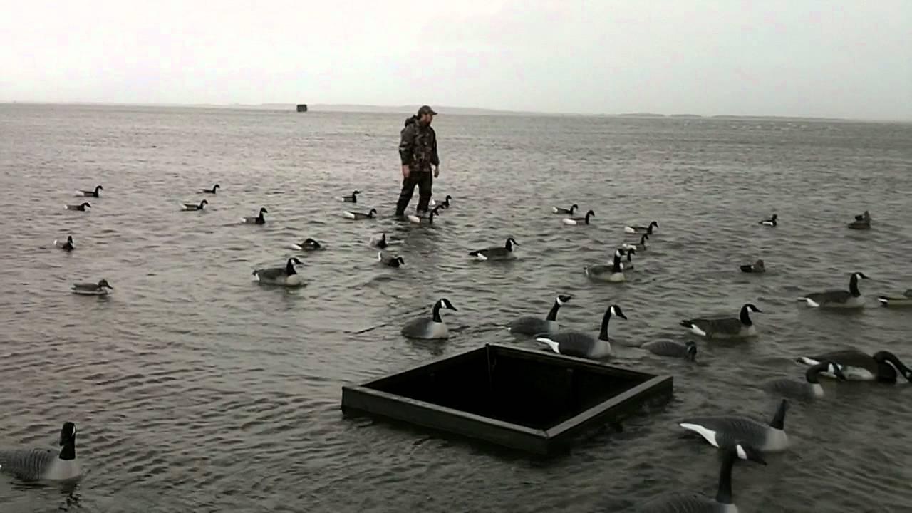 Ocracoke Duck Hunt On Howards Reef Jan 27th 2012 YouTube