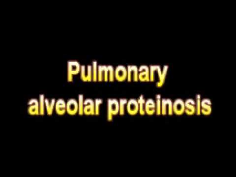 What Is The Definition Of Pulmonary alveolar proteinosis Medical School Terminology Dictionary