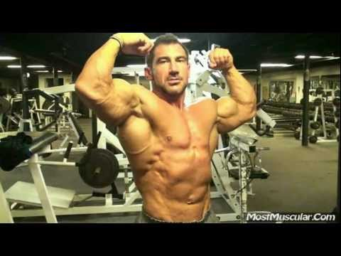 bodybuilding samples