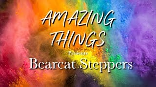 Amazing Things S4 Ep. 6 - Bearcat Steppers