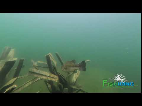 The Science Behind Fishiding Artificial Fish Habitat-Time Lapse Video (Part 6 Of 10):