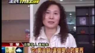 2009.0309TVBS新聞-演出驟減演員慕鈺華創業賣蔥餅-蔥油餅