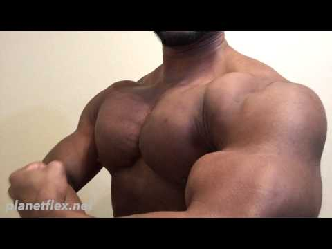 Alex Stone Muscle - Planetflex.net Preview