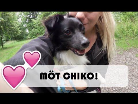 MÖT CHIKO | vlog