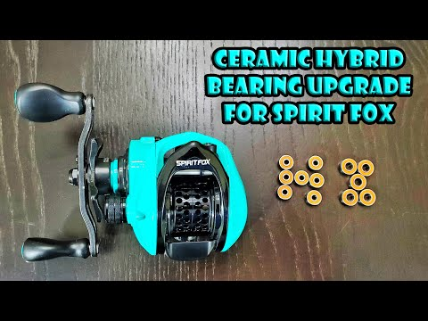 Testing Tsurinoya Spirit Fox BFS Reel with Ceramic Hybrid Bearings