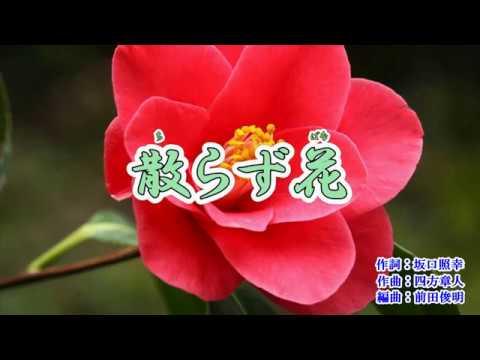 新曲「散らず花」西方裕之 カラオケ 2019年1月9日発売