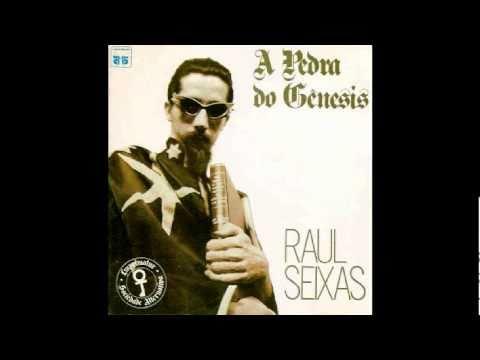 Check up - Raul seixas
