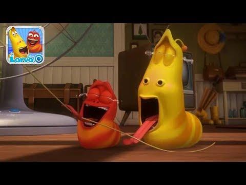 Ấu Trùng Tinh Nghịch Larva | Câu Chuyện Chiếc Quạt Gió | Larva Terbaru Cartoon Movie