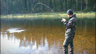 В ТАЙГУ НА НЕДЕЛЮ второй день Рыбалка на таёжной реке Изба с медвежьими следами