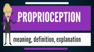 What is PROPRIOCEPTION? What does PROPRIOCEPTION mean? PROPRIOCEPTION meaning