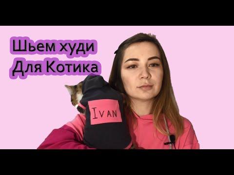 Как сшить костюм для кота своими руками
