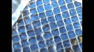 Улей - РЕПАТА. Промиване на злато(Улей или шлюз - Репата. В клипчето се разкрива целият процес на работа на устройството. Надявам се, че сме..., 2013-04-02T20:18:30.000Z)