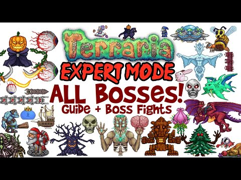 Terraria All Bosses In Order Expert Mode Guide & Fights! (Easiest to Hardest, How to Spawn Them)