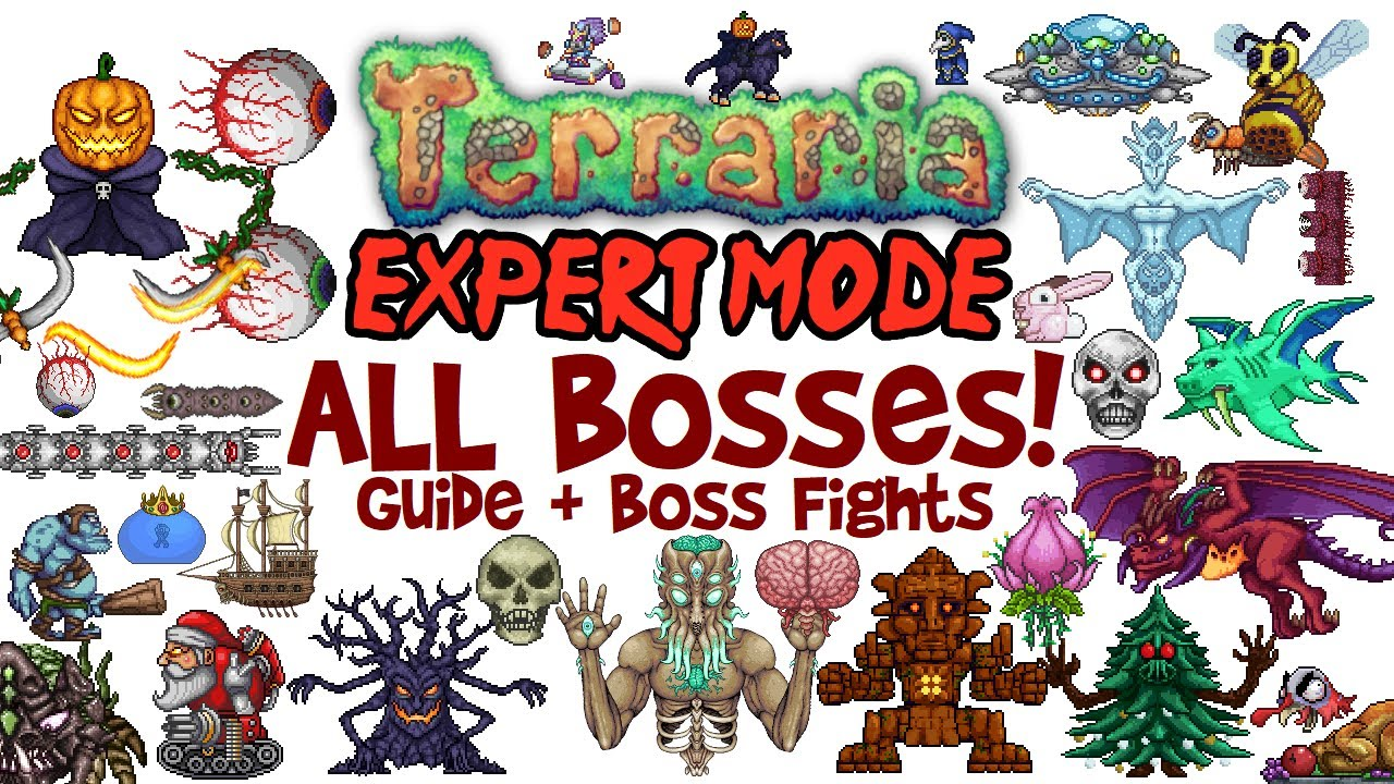 Terraria All Bosses In Order Expert Mode Guide Fights Easiest