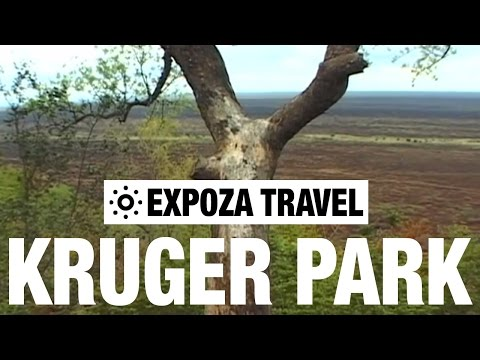 Kruger National Park Vacation Travel Video Guide