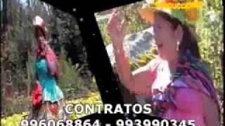 PALOMITA FLOR  MENSAJERA estrellita larahuina 2011.mp4