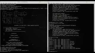 Gnu Bash 4.3 CGI Command Injection CVE-2014-6271 (exploit + Demo)