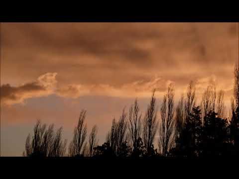 Ich Bedaure Nichts Ich Rufe Nicht Gedicht Von Sergei Jessenin Lesung Vom Vorleser