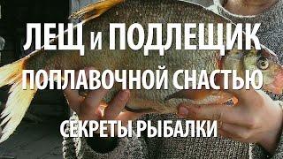 Как ловить леща на поплавочную снасть с берега. Секреты рыбалки на леща и подлещика(Секреты рыбалки поплавочной снастью на подлещика, леща. В видео советы рыбакам, как успешно ловить леща..., 2016-09-05T10:59:31.000Z)