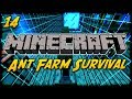 Minecraft Ant Farm Survival [14] - The Taming of the Animals!