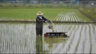 内山農産のゴロ押し(無農薬田の機械除草) thumbnail