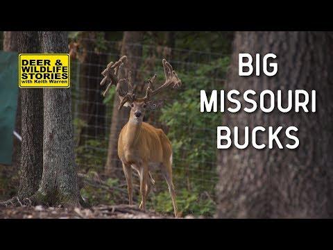 Big Missouri Bucks at Xtreme Whitetails | Deer & Wildlife Stories
