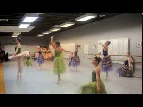 Behind the Performance: Classical Ballet Academy