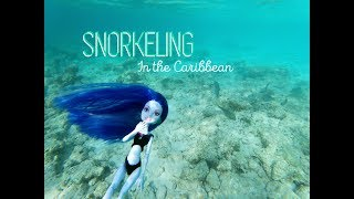 Snorkeling in the Caribbean- A Monster High/Ever After High Beach Vacation Stop Motion