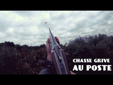 Chasse Grive ; De L Action!! 2017/2018