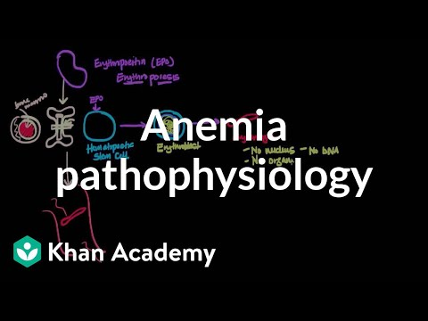 Anemia pathophysiology | Hematologic System Diseases | NCLEX-RN | Khan Academy