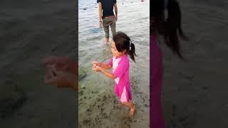 Download Berburu ubur - ubur dipantai ancol Mp3