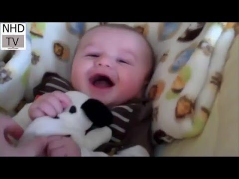 Funny baby videos | babies laught humorous video | funny babies clips | lustige videos