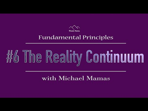 The Reality Continuum: Fundamental Principle #6 with Michael Mamas