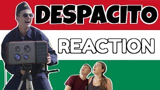 DESPACITO PARÓDIA REACTION!